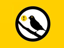 How tech companies use warrant canaries to secretly communicate with you
