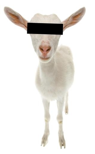 as-image-goat